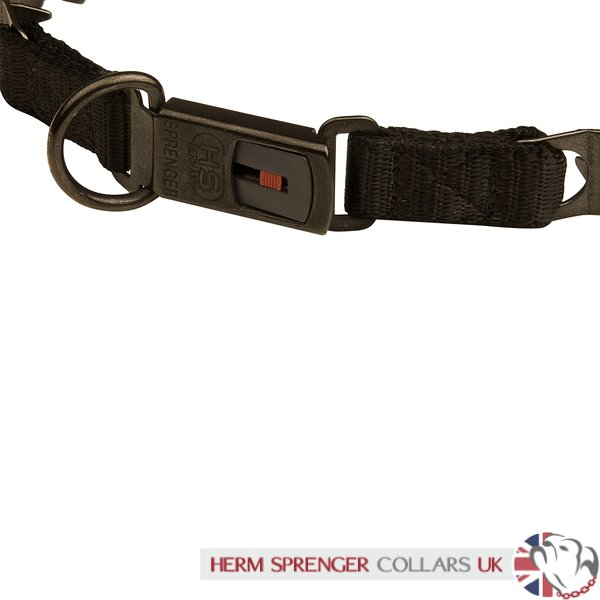 """Black Star"" Black Stainless Steel Dog Collar Neck Tech Sport"