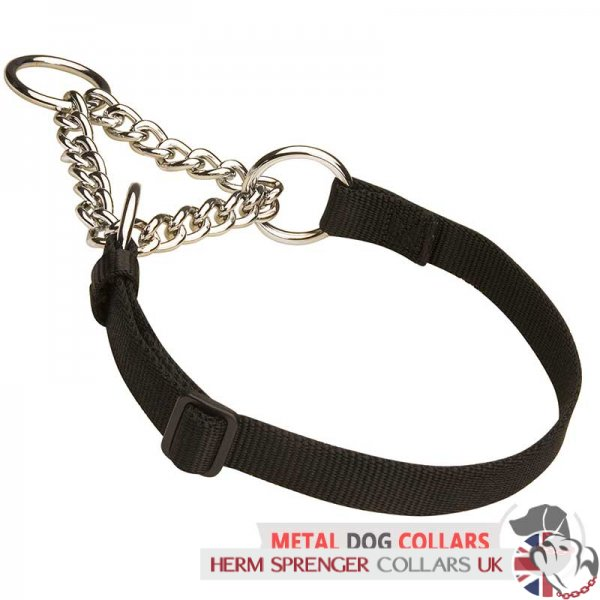 """Synthetic Friend"" Nylon and Chain Dog Collar"