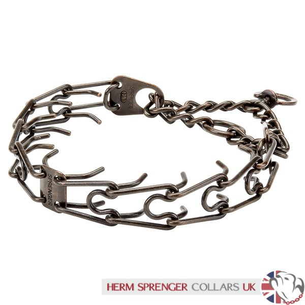 """Professor Brown"" Herm Sprenger 3 mm Antique Metal Dog Collar"