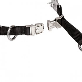 """Comfy Lock"" Chrome Plated Herm Sprenger Prong Collar with Buckle 3.2 mm"