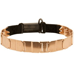 """The Golden Boy"" Herm Sprenger Neck Tech Sport Curogan Prong Collar"